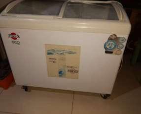Congeladora Tokyo Eco curv 350 litros para helados