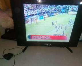 Tv plasma de 21 pulgadas full hd