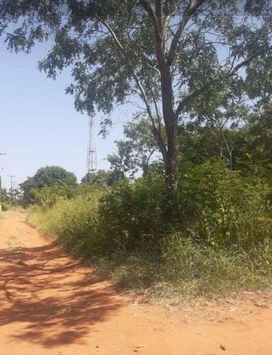 Terreno en capiatá ruta 1 - 1