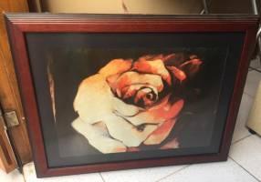 Cuadro de una rosa