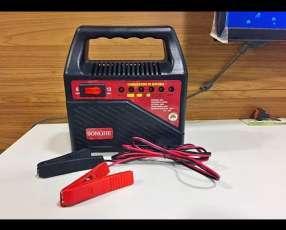 Cargador de baterías para vehículos