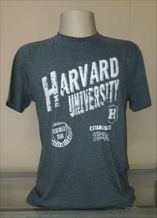 Remera Harvard masculino gris estampado talla L - 1