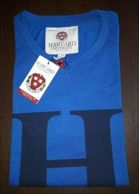 Remera Harvard masculino azul estampado letra H talla L