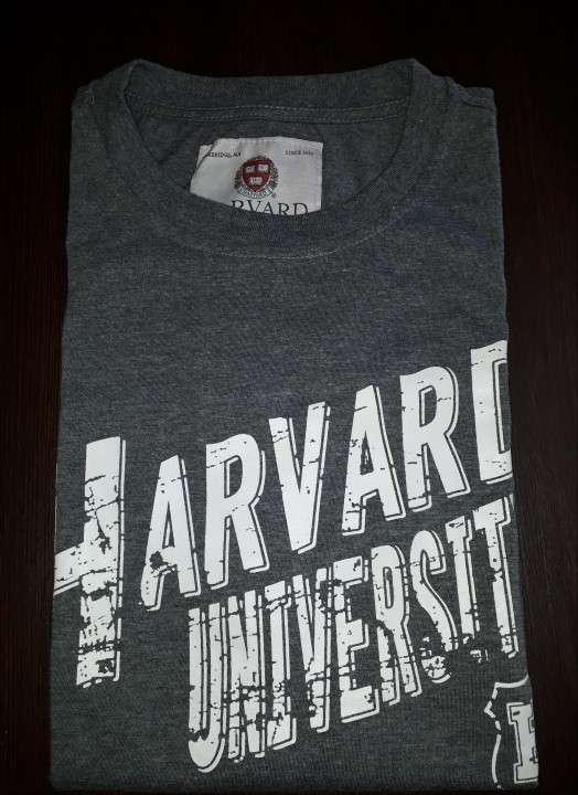 Remera Harvard masculino gris estampado talla L - 0