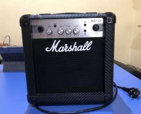 Amplificador Marshall MG 10