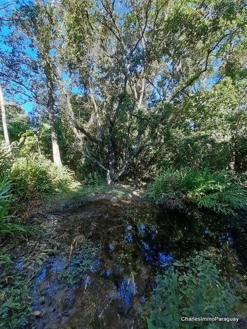 Terreno 6.3 hectareas cerca tebicuary-mi - 2