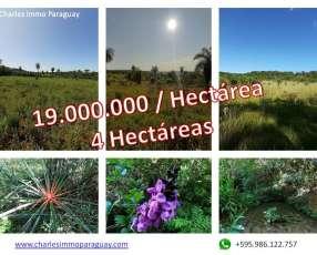 Terreno 4 hectareas la colmena / ybycui