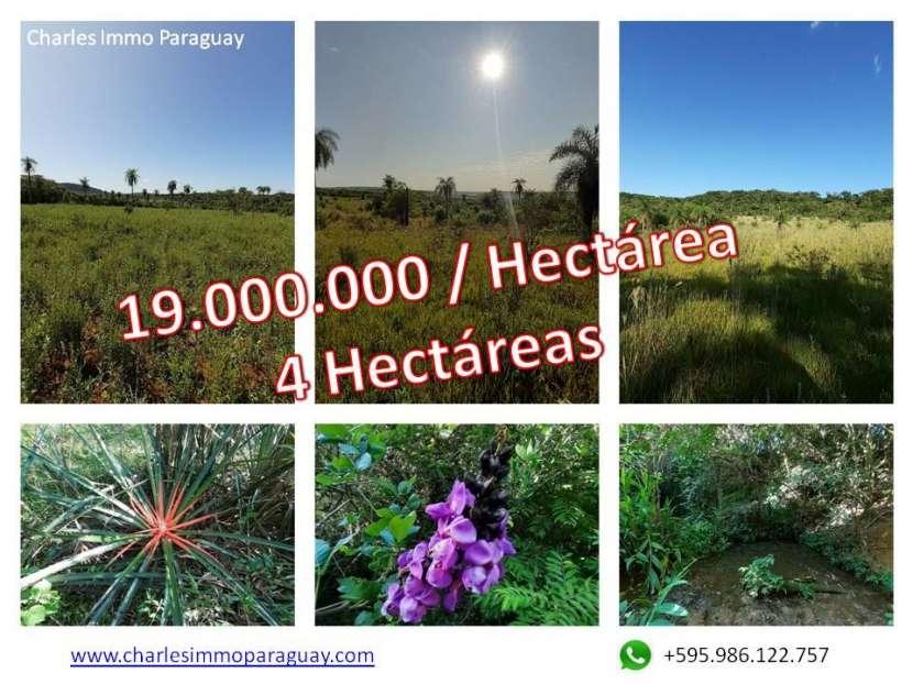 Terreno 4 hectareas la colmena / ybycui - 0