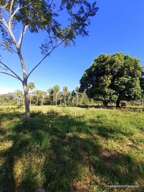 Terreno 6.3 hectareas cerca tebicuary-mi - 5