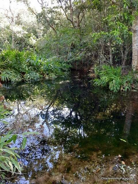 Terreno 6.3 hectareas cerca tebicuary-mi - 1