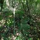 Terreno 4 hectareas la colmena / ybycui - 4