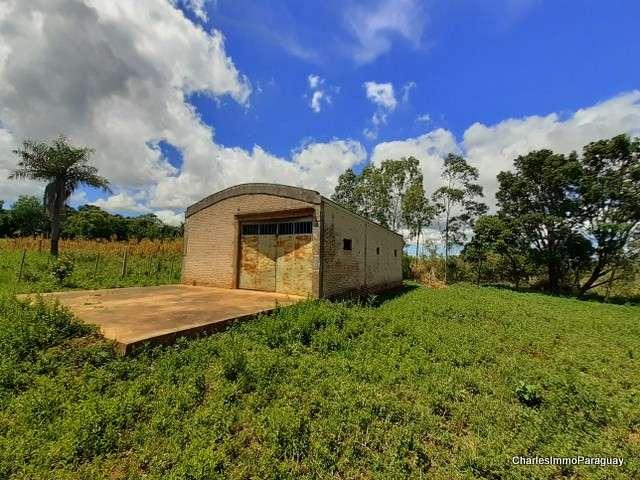Terreno 1 hectarea + tinglado 70m² - 4