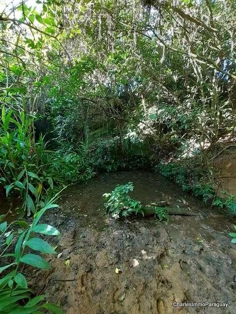 Terreno 4 hectareas la colmena / ybycui - 2