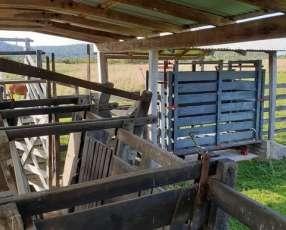 Estancia 270 hectáreas en Caapucú