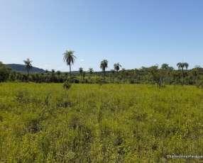 Terreno 25 hectáreas en Ybycuí La Colmena