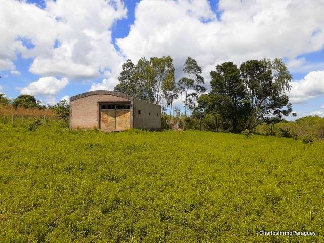 Terreno 1 hectarea + tinglado 70m² - 3