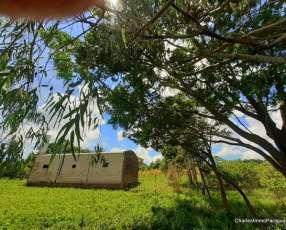 Terreno 1 hectarea + tinglado 70m² La Colmena