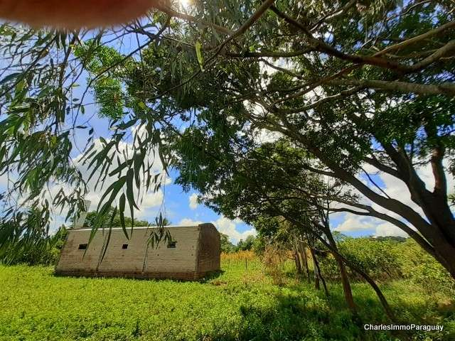 Terreno 1 hectarea + tinglado 70m² - 0