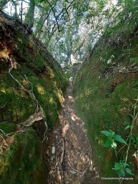 Terreno 4 hectareas la colmena / ybycui - 1