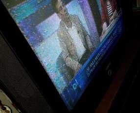 TV Tokyo de 29 pulgadas