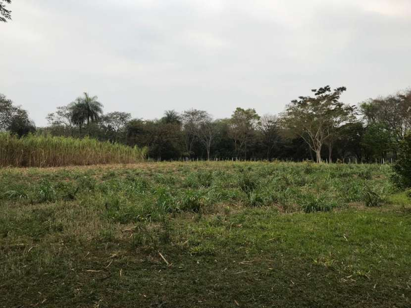 Granja en Escobar - 6