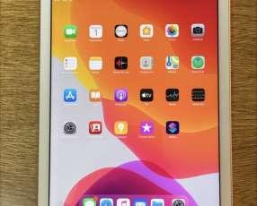 Apple iPad wifi 128 Gold 6ta generación y Apple pencil seminuevo