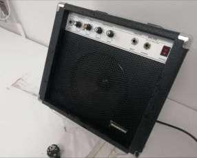 Amplificador de guitarra Shamsonic AK10G