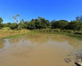Terreno 50 hectáreas cerca de Salto Cristal