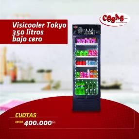 Visicooler Tokyo 350 litros