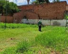 Limpieza y mantenimiento de lotes baldíos patios jardines
