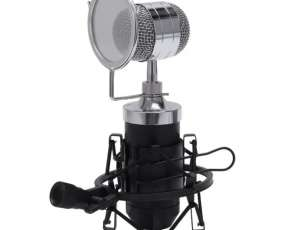 Micrófono condensador BM 3000
