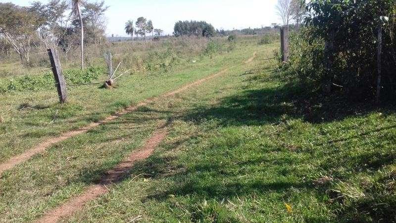 160 hectáreas en Caaguazú - 3