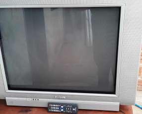 TV Philips de 29 pulgadas con control