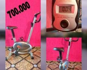 Bicicleta estática Evolution Fitness