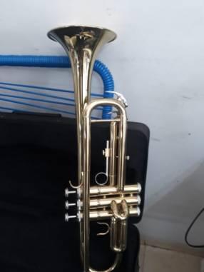 Trompeta dorada Baldassare