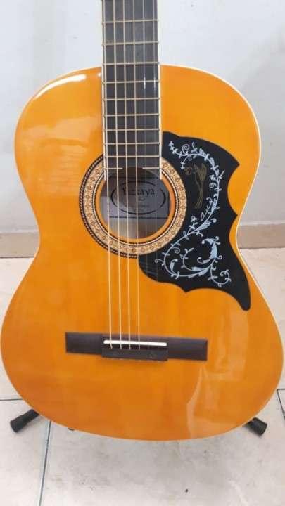 Guitarra vizcaya arfg94 - 2