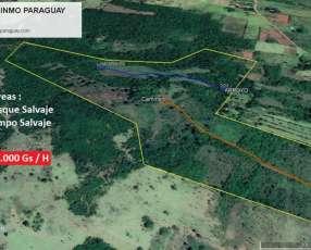 Terreno 40 hectáreas La Colmena