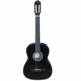 Guitarra electroacsutica