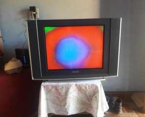 TV Midas a reparar