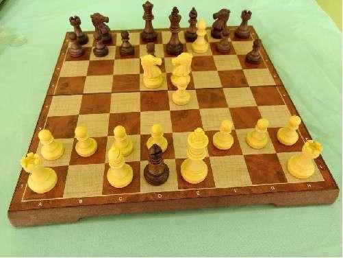 Juego de ajedrez y damas magnético de plástico - 1