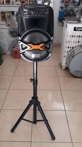 Parlante amplificado Megasonic de 12