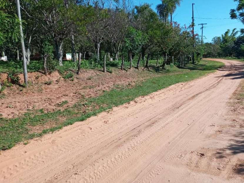 Terreno 20x200 metros en Tucangua Cañada Altos - 1