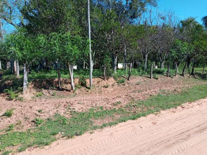 Terreno 20x200 metros en Tucangua Cañada Altos - 2