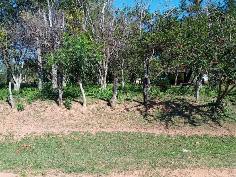 Terreno 20x200 metros en Tucangua Cañada Altos - 3