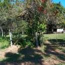 Terreno 20x200 metros en Tucangua Cañada Altos - 4