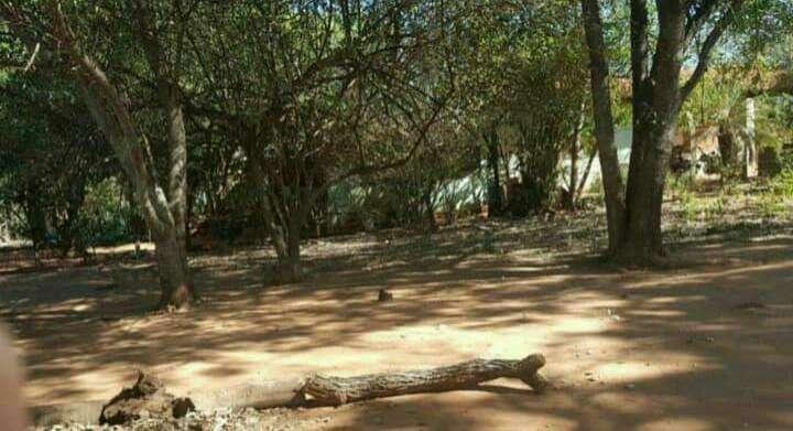 Terreno en Luque zona Villa Policial - 0