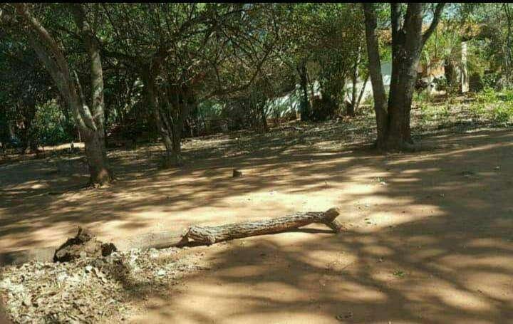 Terreno en Luque zona Villa Policial - 4