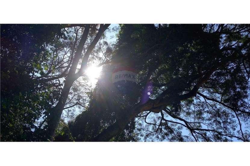Terreno en Marambure Luque - 4