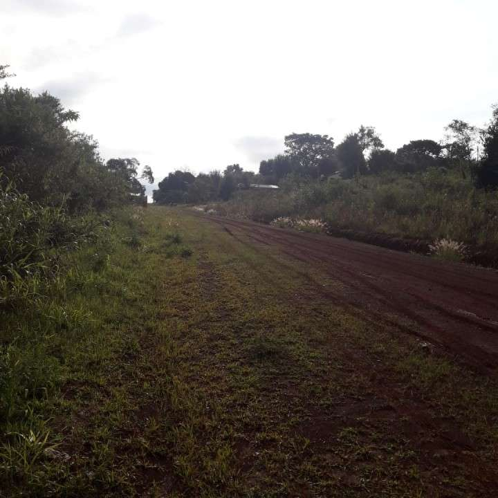 Terrenos en Encarnación zona del nuevo puente - 1
