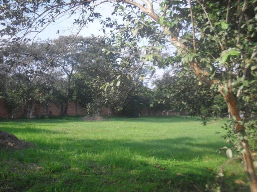 Terreno zona Ñu Guazú - 4